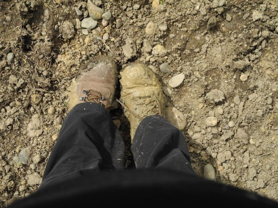 muddy boots tots in tawhero